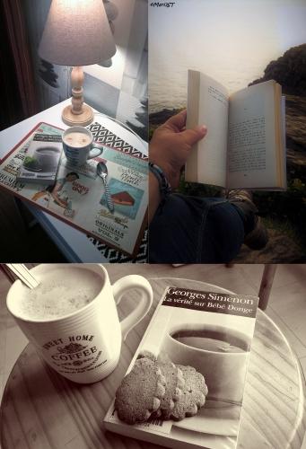 quelques instants de lecture,rendez vous mensuel made in mariejuliet,livres et instants lecture en photos,mises en scène,plus on est de fous plus on s'en met plein la vue
