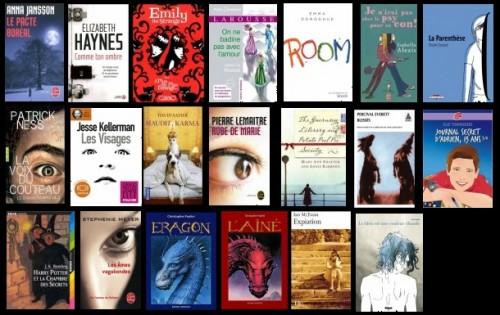 bilan livres lus non chr en 2012.jpg
